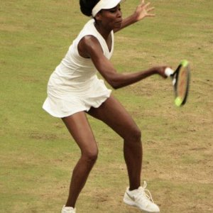 Venus at wimbledon 2017